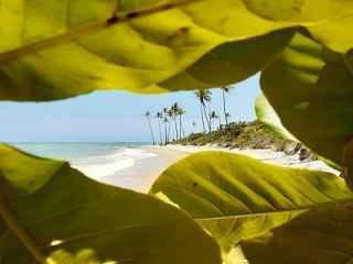1597765282-praia-e-belas-paisagem-aqui-voce-encontra.jpg