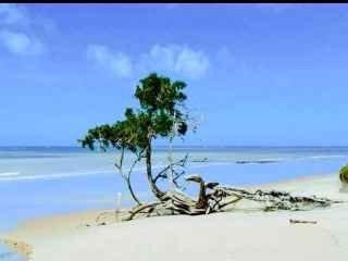 1598277233-praia-do-moreira.jpg