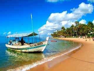 1613069012-atrativos-praia-do-forte-ba-brasil.jpg
