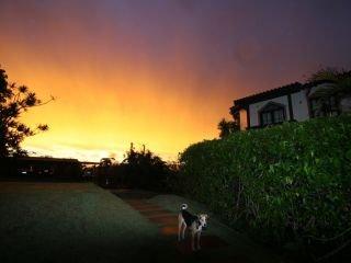 1622483375-pousada-na-praia-do-rosa-centrinho-sunset-7.jpg